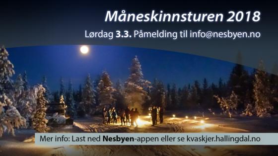 Måneskinnsturen 2018 Nesbyen