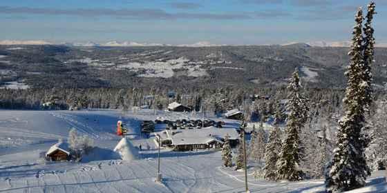 Nystølkroken i Trondrudmarka, Nes Sørmark
